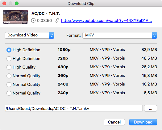 Select quality type and Download mkv Youtube clip